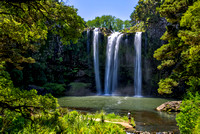 Whangarei Falls in Whangarei New Zealand 2